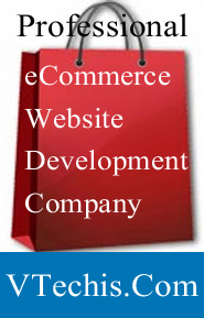 eCommerce Development Company in Indore